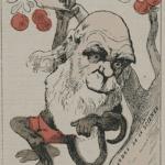 Evolution et Foi, de Darwin à nos jours